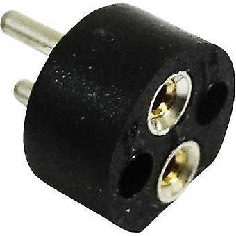 BELI-BECO 254 Pæreholder Stikkontakt (minipærer): Bi-pin 4 mm Tilkobling: Loddepinne 1 stk.(r)