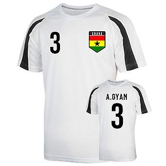 Ghana sport Training Jersey (gyan 3)