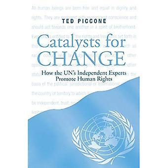 Katalysatorer för förändring: hur FN: s oberoende experter främja mänskliga rättigheter