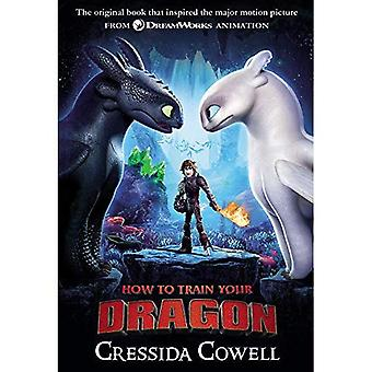How to Train Your Dragon (How to Train Your Dragon)