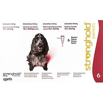 Stronghold Red Dogs 10-20kg (22-44lbs) - 6 Pack