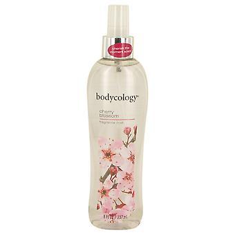 Bodycology Cherry Blossom by Bodycology tuoksu Mist Spray 8 oz/240 ml (naisten)
