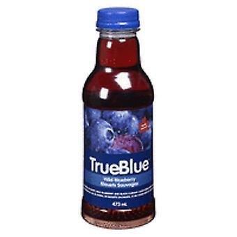 Echte blaue Heidelbeere Pomegranite - ( 473 Ml X 1 Packung)