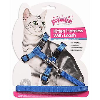 Pawise Arnés y Correa 1.2Mm Gatitos (Dogs , Collars, Leads and Harnesses , Leads)