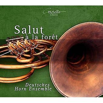 Abt / Hansel / Deutsches Horn Ensemble / Stark - Salut a La Foret [CD] USA import
