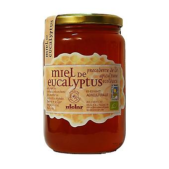 Organic Eucalyptus Honey 1 kg