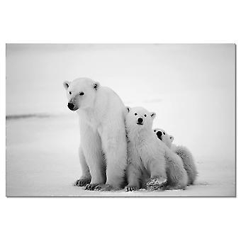 Zwierzęta stołowe rodzina niedźwiedź polarny