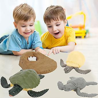 Educational Simulation Children's Best Animal Growth Cycle Model Cartoon Toys