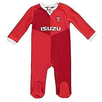Wales RU Sleepsuit 6/9 mths QT