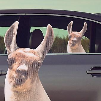 Thumbs Up! Ride With Llama