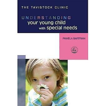Comprendre votre jeune enfant ayant des besoins spéciaux (comprendre votre enfant) (comprendre votre enfant de série)
