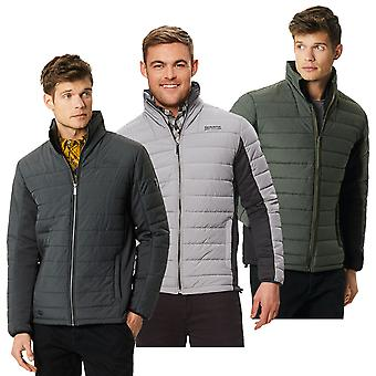 Regatta Mens Ibsen Insulated Durable Water Repellent Jacket