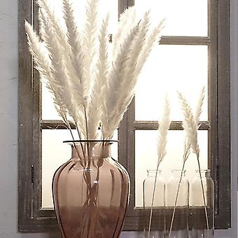 Bulrush Natural Dried Flowers Small Pampas Grass Diy Artificial Plants For Home
