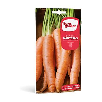 Carrot seeds Nantesa 5 10 g