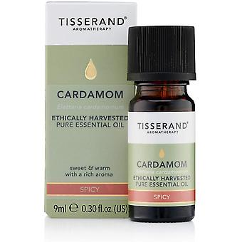 Tisserand Aromatherapy Ethically Harvested Cardamom Essential Oil 9ml