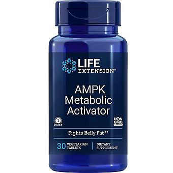 Estensione della vita AMPK Attivatore metabolico Vegitabs 30