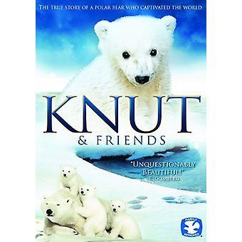 Knut & Friends [DVD] USA import