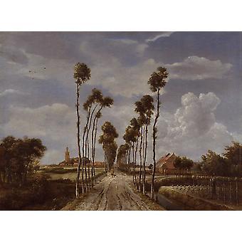 Avenue at Middelharnis, Meindert Hobbema, 50x40cm