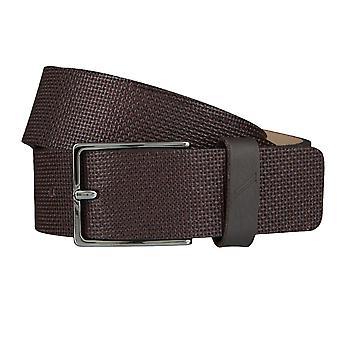 DANIEL HECHTER belts men's belts leather belt Brown 4049