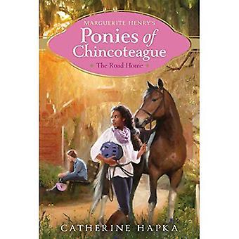 Tien kotiin (Marguerite Henry ponit Chincoteague)