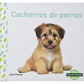 Cachorros de Perros (Cr como de Animales (Baby Animals))