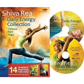Shiva Rea - raccolta giornaliera di energia [DVD] Stati Uniti importare