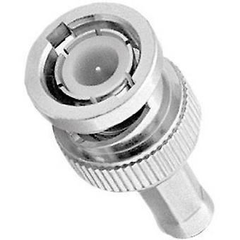 Amphenol B1121A1-ND3G-1-50 BNC connector Plug, straight 50 Ω 1 pc(s)