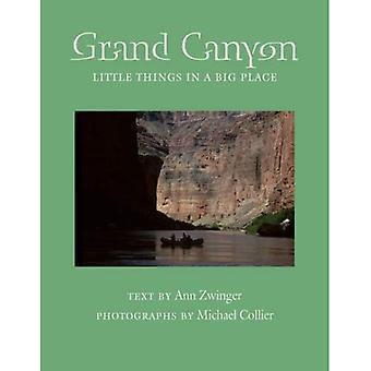 Grand Canyon: Kleine dingen in een grote plaats