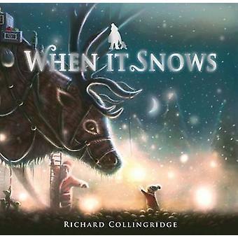 Wanneer het sneeuwt door Richard Collingridge - 9781849921404 boek