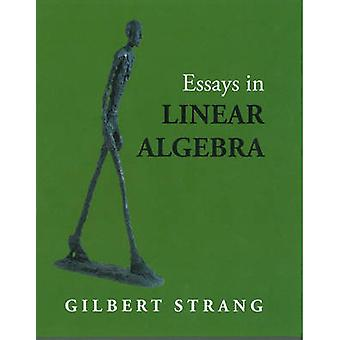 Essays in Linear Algebra by Gilbert Strang - 9780980232769 Book