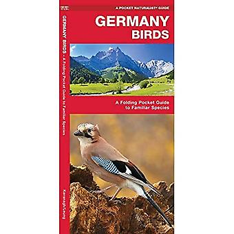 Germany Birds: A Folding Pocket Guide to Familiar Species (Wildlife and Nature Identification)