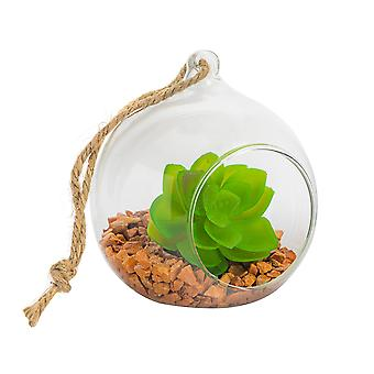 Nicola Spring Glass Plant Terrarium Set for Succulent Plants Ferns Cactus - Tabletop or Hanging Display - 100mm