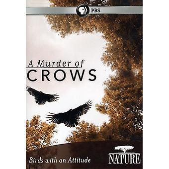 Natur - Mord von Krähen [DVD] USA importieren