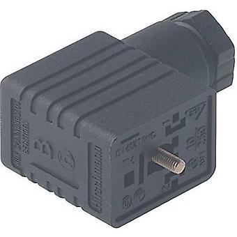 Hirschmann 934 457-100 GMN 216 NJ kabel Socket, vrij configureerbaar zwart aantal pinnen: 2 + PE