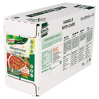Knorr Professional 100% Minestrone Soup Pouches