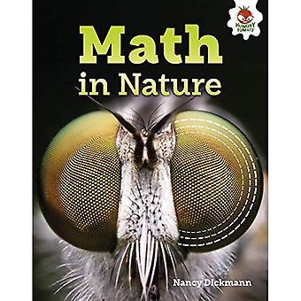 Math in Nature (Amazing World of Math)