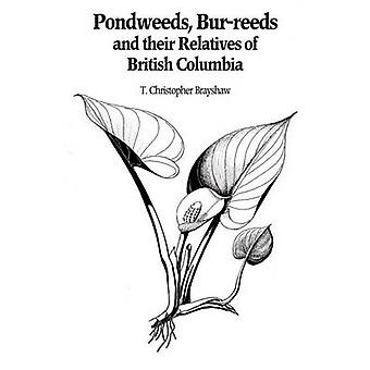 Pondweeds - Bur-Reeds and Their Relatives of British Columbia - Aquati