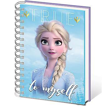 Frozen 2 Sisters Notebook