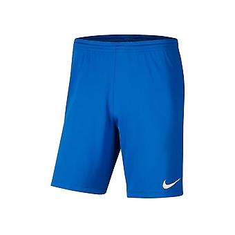 Nike JR Park Iii Knit BV6865463 football all year boy trousers