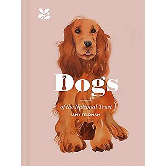 Dogs of the National Trust by Amy Feldman - 9781911358695 Book