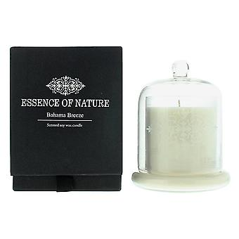 Liberty Candles Essence Of Nature Bahama Breeze - Scented Soy Wax Candle 297g