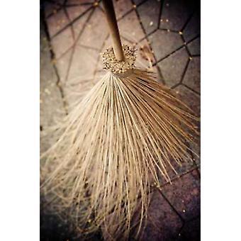 Thai Broom II Poster Print by Erin Berzel