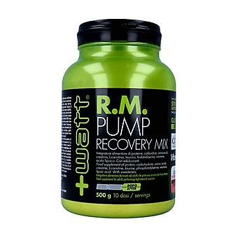 RM PUMP Recovery Mix 500 g of powder (Grapefruit)