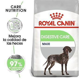 Royal Canin Maxi Digestive Pienso Perro Adulto Grande con Sensibilidad Digestiva