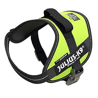 Julius-K9 IDC-Powerharness para perros Tamaño: Mini, Verde neón
