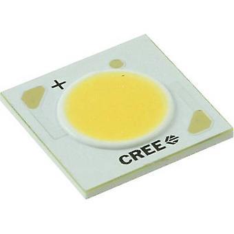 CREE HighPower LED koud wit 24 W 1538 LM 115 ° 18 V 1200 mA CXA 1512 0000-000F0 HM 450 F