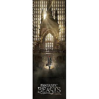 Fantastic Beasts And Where To Find Them Door Poster