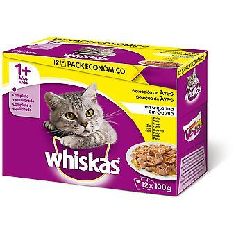 Whiskas Pack 12 1+ Selección de Aves (Cats , Cat Food , Wet Food)
