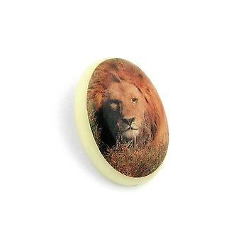 Brooch Lion-motif Ivory