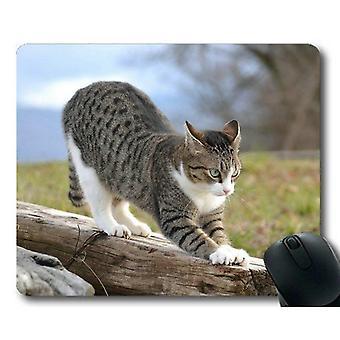(260X210X3) Almohadilla de ratón para juegos, almohadilla de ratón de gato animal, estera de ratón para ordenador cat245